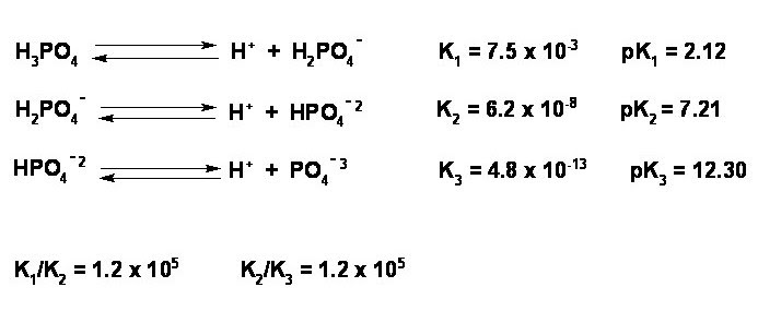 Chemistry Laboratory: Neutralization of a polyprotic acid