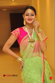 Model Nilofer Haidry Stills in Green Saree at Trendz Exhibition and Sale 2016  0030.JPG