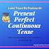 Learn present perfect continuous tense with examples