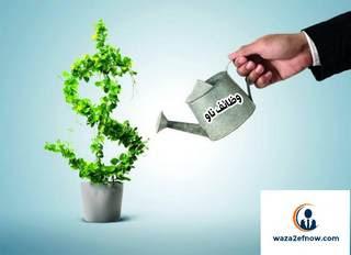 كيف أستثمر مبلغ بسيط 2019 - الاستثمار الناجح | وظائف ناو