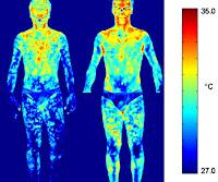İnsan beyin ve vücut sıcaklığını gösteren termal görüntü