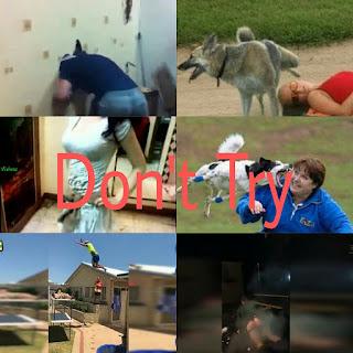 Idiots Fails Stupid People Doing Stupid Things