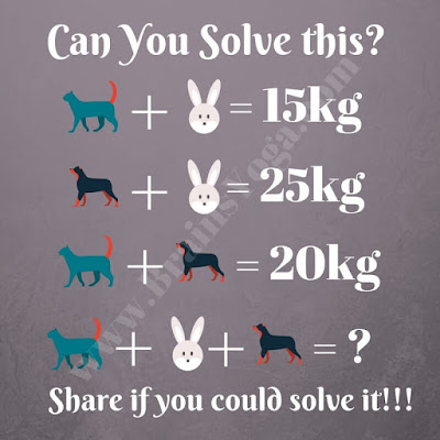 Maths Picture Puzzle