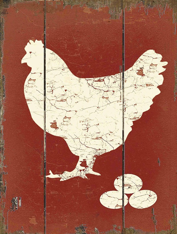 Barnyard White Hen