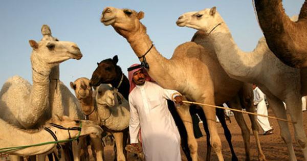 Tak Beradab!! Warga Arab Merendahkan Nabi Muhammad SAW