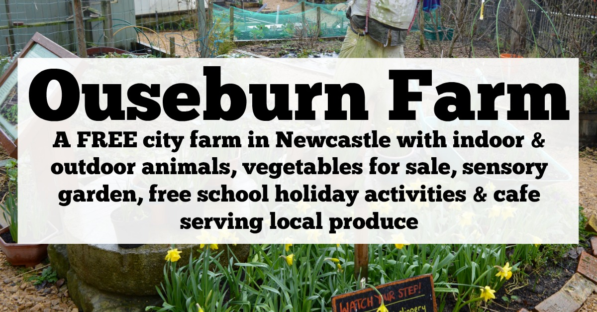 Ouseburn Farm Newcastle | A FREE Place to Take the Kids