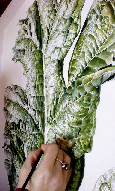 Artichoke (Cynara cardunculus var. scolymus)