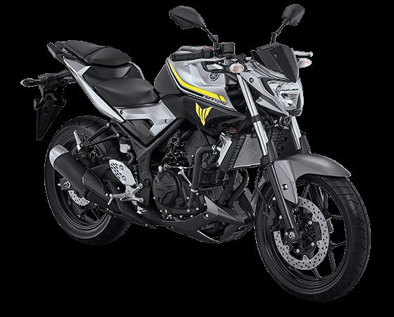 2017 Yamaha MT-25 Heroic Silver