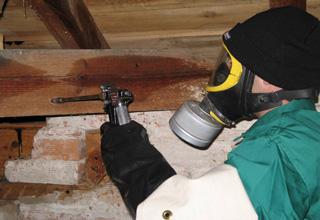 tratamientos madera castellón termitas carcoma