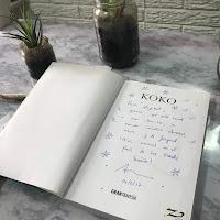 reseña del libro Koko, una aventura ecológica