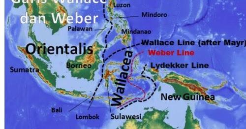 Garis Wallace Dan Garis Weber Garis Yang Membagi Indonesia Menjadi 3 Bagian Geologinesia