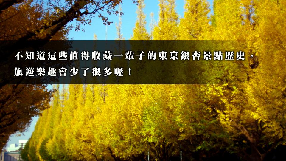 日本,東京,旅遊,銀杏,東京大學,赤門,明治神宮外苑,昭和紀念公園,立川口運河,暢談小道銀杏街道樹,加賀百萬石