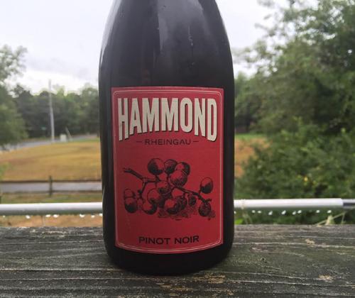 Hammond Rheingau Pinot Noir 2014