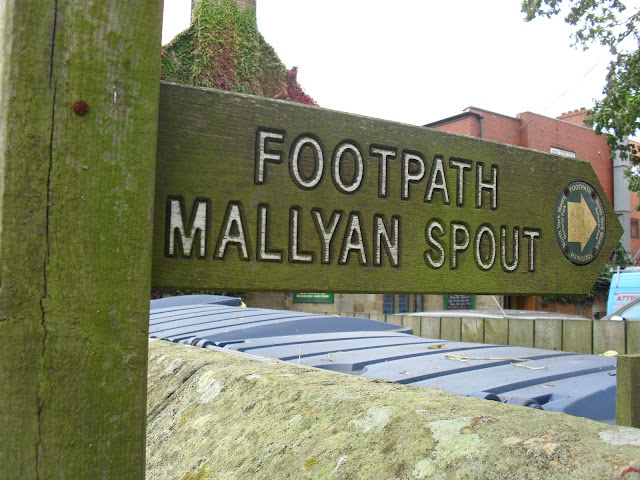 Footpath to Mallyan Spout