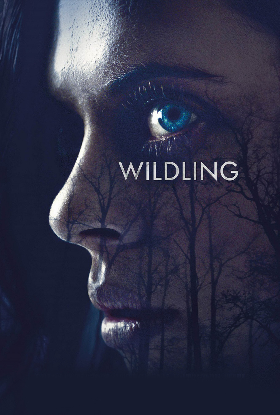 Wildling [2018] [DVDR] [NTSC] [CUSTOM HD] [Subtitulado]