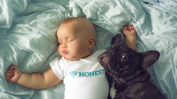 """Tình """"huynh đệ"""" khăng khít giữa bé trai và chú chó bull sinh cùng ngày"""