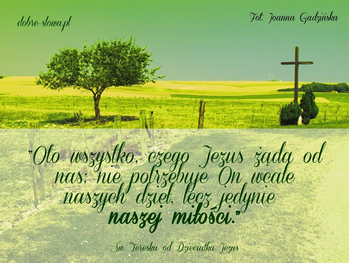 Znalezione obrazy dla zapytania sw teresa od dzieciatka jezus sentencje