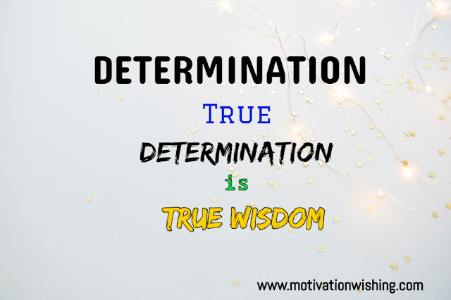 Quotes About Determination | Quotes On Determination