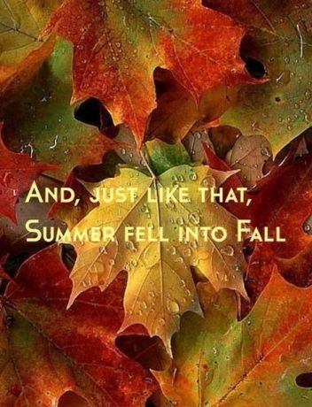 Its Fall Yall Wallpaper Quot Even If Something Is Left Undone Everyone Must Take Time