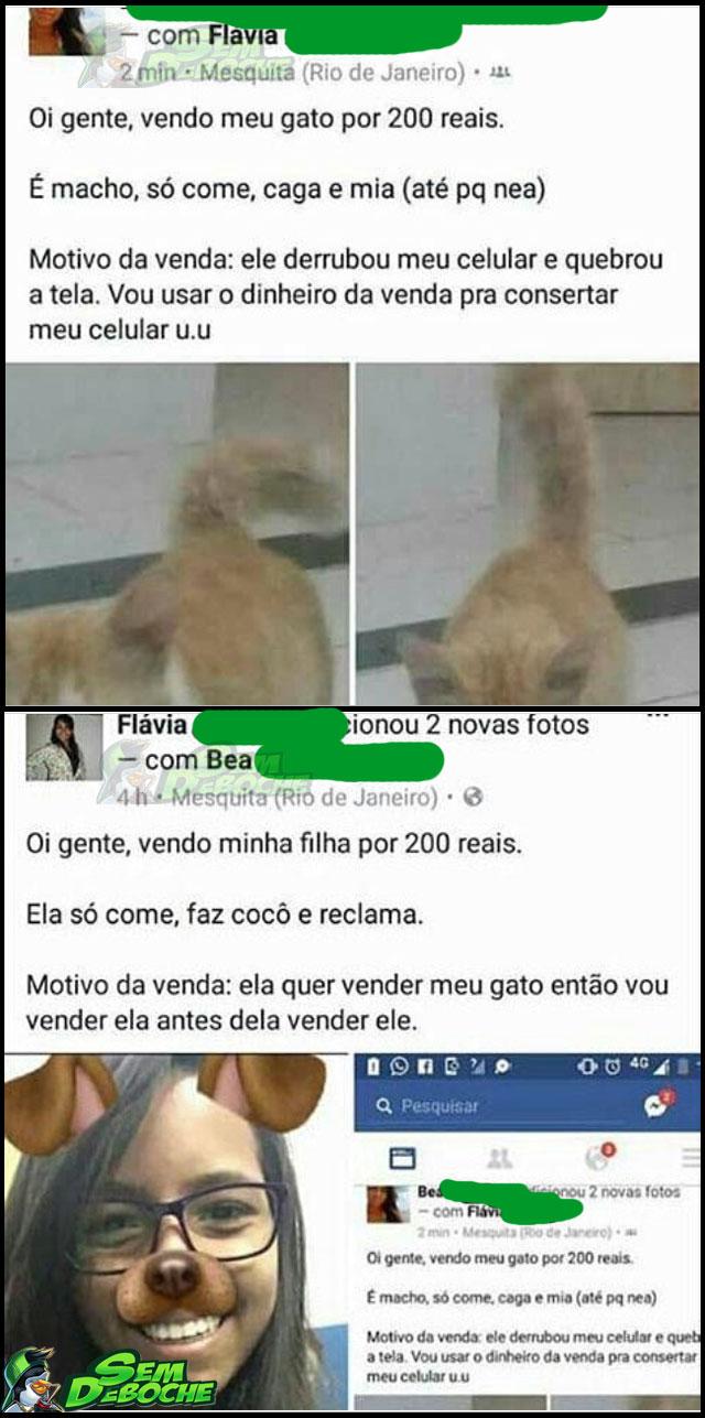 CASOS DE FAMÍLIA
