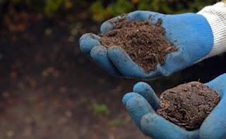 Fiqih Syiah: Lebih Afdhal Berbuka Puasa dengan Tanah Kuburan