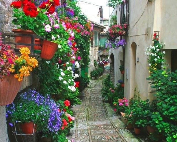 Huertas y jardines en cordoba patios andaluces una - Imagenes de patios andaluces ...