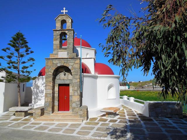 grecka cerkiew z czerwoną kopułą pod eukaliptusem Mykonos Grecja