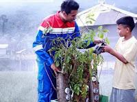 Perkenalkan Naufal Raziq, Remaja Penemu Energi Listrik dari Pohon Kedongdong