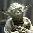Be a Start-Up Jedi: Do or Do Not, There is No Try…