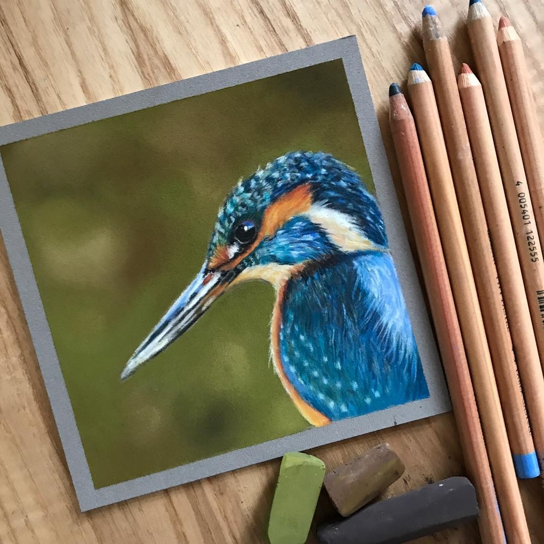 07-Kingfisher-Paul-Miller-Wildlife-and-Domestic-Animal-Drawings-www-designstack-co