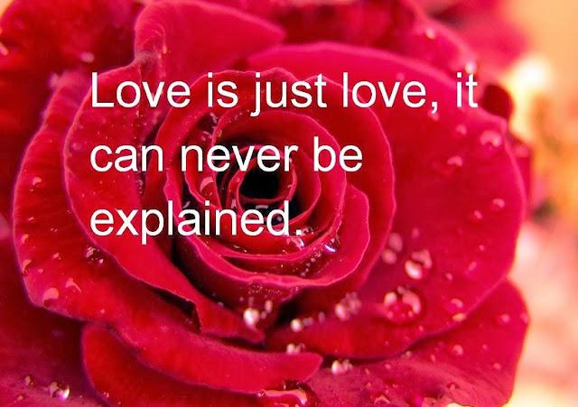 Crazy Valentines Day Whatsapp DP