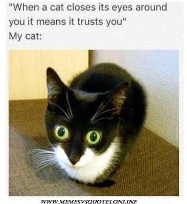 It trusts you