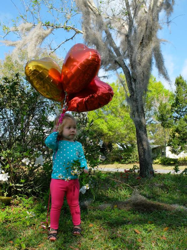heart shaped balloons for Valentine's Day