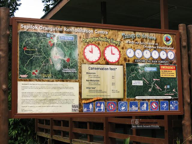 Pusat Pemulihan Orang Utan Sepilok, Sandakan Tempat Menarik Di Sabah