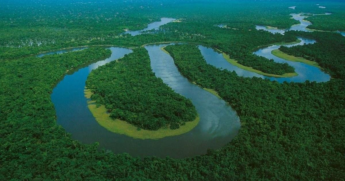 Os 5 Maiores Rios Do Brasil Florestal Brasil