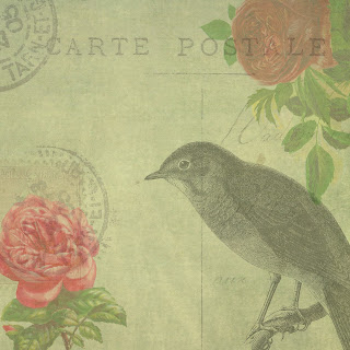 paper digital scrapbook bird rose collage crafting