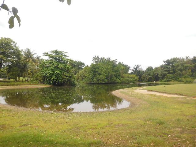 kawasan botanic garden