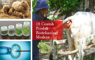 Bioteknologi Modern : 11 Contoh Produk dan Penerapannya