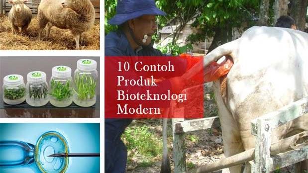 Pemanfaatan Mikroorganisme Dengan Bioteknologi Modern Di Bidang Kedokteran Blogpunyabianca