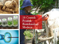 Bioteknologi Modern : Pengertian, 10 Contoh Produk dan Penerapannya