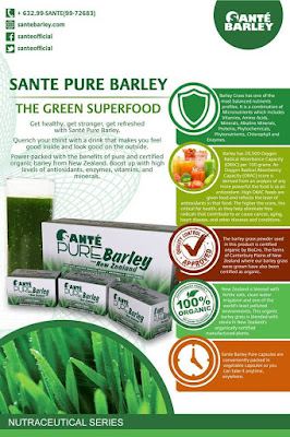 The green superfood