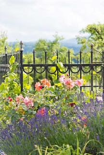 ländliche Gärten - Bepflanzung