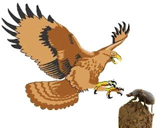 L'aquila e lo scarabeo stercorario - Esopo