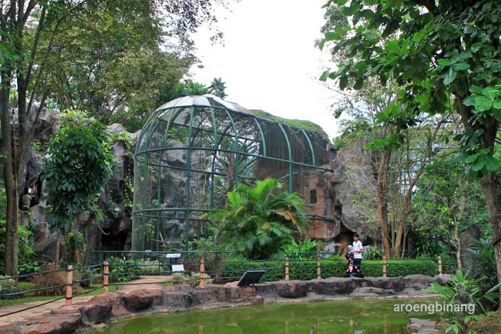 pusat primata schmutzer kebun binatang ragunan jakarta