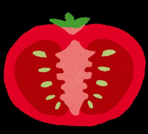 トマトの断面のイラスト かわいいフリー素材集 いらすとや