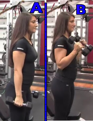 biceps and forearm workout,hammer curl
