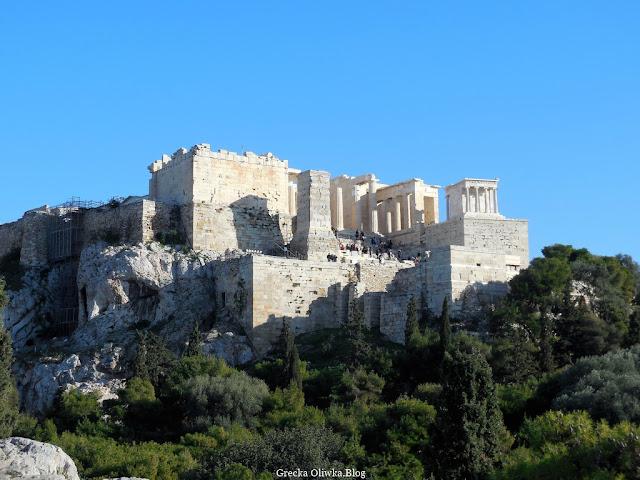 u podnóża góry przy wejściu na Akropol rosną drzewa oliwne i cedry, bezchmurne greckie niebo