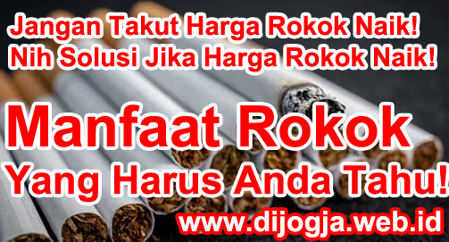 Jangan Takut Harga Rokok Naik! Nih Solusi Jika Harga Rokok Naik! Manfaat Rokok Yang Harus Anda Tahu!