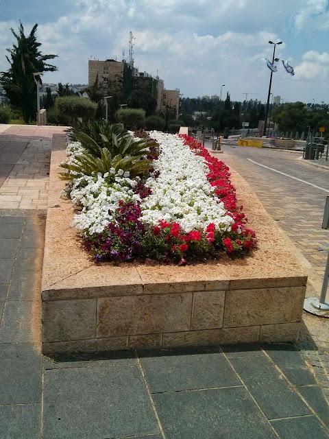 פרחים -משכן הכנסת
