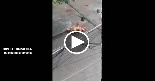 [VIDEO] Seorang Warga Emas Di Gigit Seekor Anjing Yang Ganas. Jika Korang Lemah Semangat DILARANG Sama Sekali Tengok!